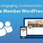 Quản trị người dùng trong wordpress plugin Ultimate Member